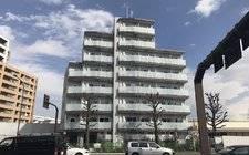 JapanTokyo-HY's Salire