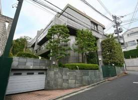 東京市·Tokyo port area platinum 2 chome high - class villa
