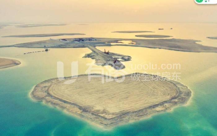 阿联酋迪拜-Seahorse (Tzar Edition)