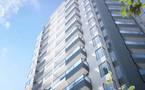 新西兰奥克兰-文森特公寓