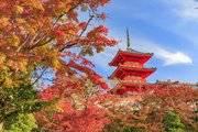 疫情下的日本房产市场,涨or跌?