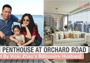 赵薇夫妇1.38亿买新加坡豪宅,如何巧用信托省税1000万?-有绿卡