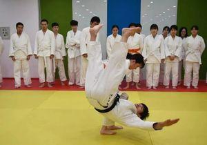 在东京,我近距离观摩了一堂小学生的体育课