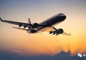 美国6.16起暂停所有中国客运航班 ,民航局出台最新调整-有绿卡