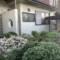星光为顶,花园为底,日本优墅豪华庭院带你享受别致生活!