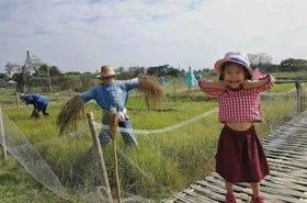 从北京到清迈,我为什么带女儿去泰国读国际幼儿园?-有绿卡