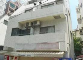 东京·東京都新宿区精品投资小户型房产