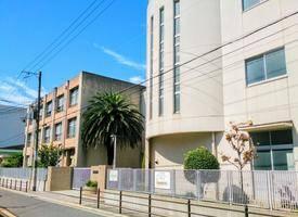 大阪·优墅NO.5——寺田町学区独栋别墅