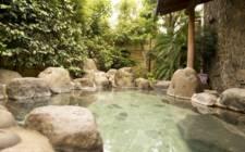 "JapanKamo County-""壹栋"" hot spring hot spring hotel"