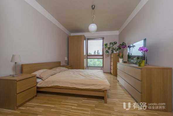 捷克共和国-国际区现代公寓