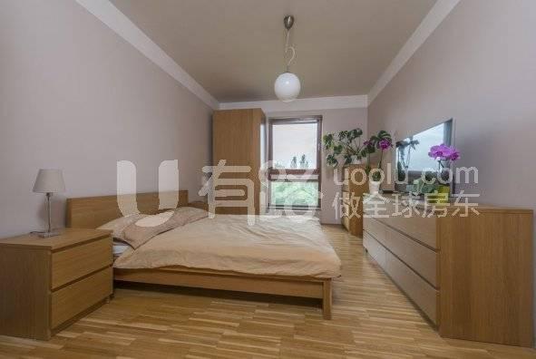 Czech Republic-International Apartment in the International District