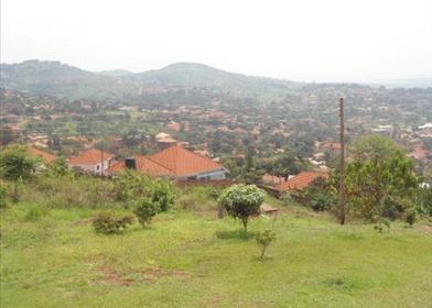 乌干达-温馨独栋别墅