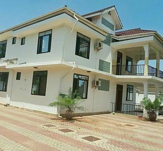 坦桑尼亚-海滩边的美丽的房子