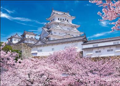 日本京都-紧邻京都著名景点「鸭川」,景色优美