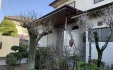 """日本松山市-""""Youshu · yard series"""" NO.2-Songshan Garden Villa"""
