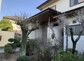 松山市·「优墅·院子系列」NO.2-松山花园独栋别墅