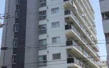 日本大阪-[1260w] New Earthquake Owned Apartment 0714@Three Kingdoms
