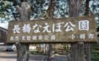 日本小樽市-「优墅·院子系列」NO.21-小樽幸小学巴士站前别墅