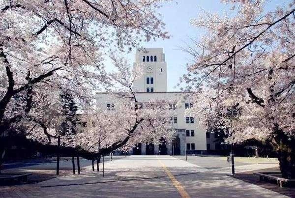 学区房凉了,东渡日本求学潮